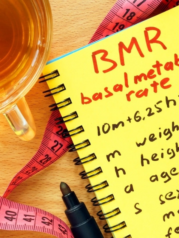 Factors That Significantly Affect Your Basal Metabolic Rate (BMR)
